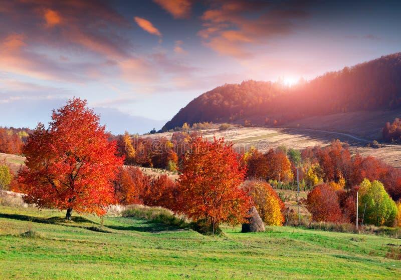 Kolorowy jesień wschód słońca w górskiej wiosce fotografia stock