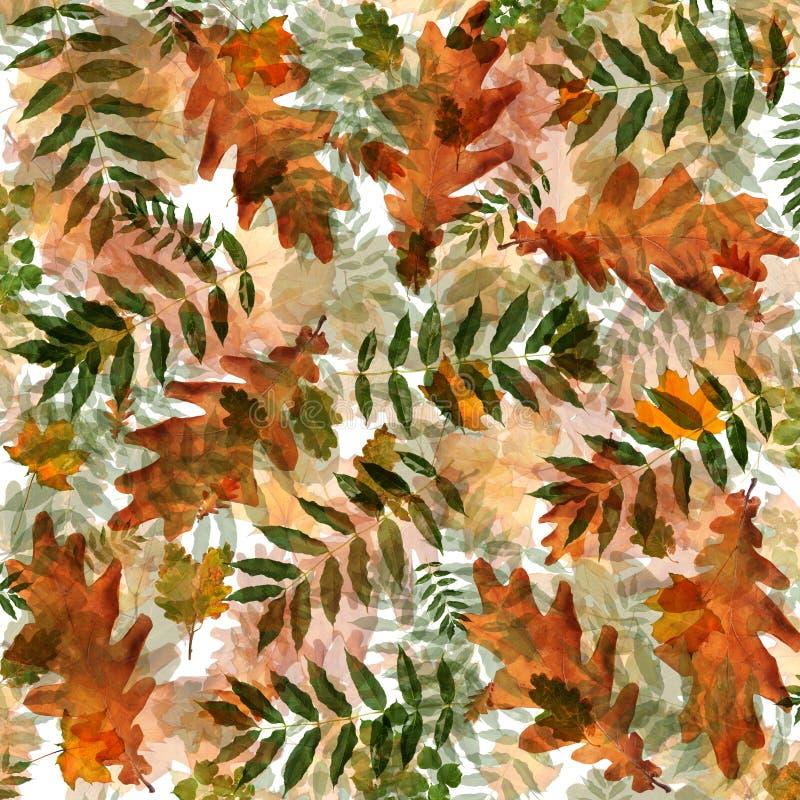 Kolorowy jesieni ulistnienie w chaotycznym rozkazie na abstrakcjonistycznym tle ilustracja wektor