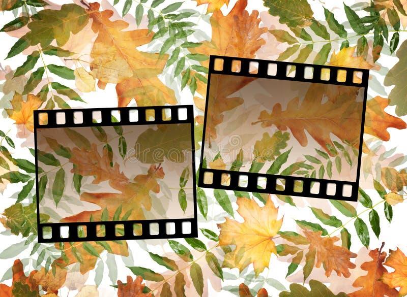 Kolorowy jesieni ulistnienie w chaotycznym rozkazie na tle z obruszeniami ilustracja wektor