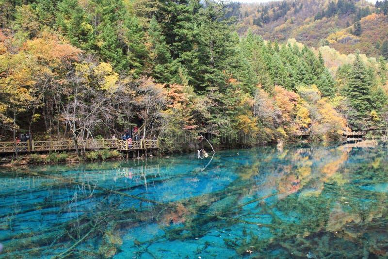 Kolorowy jezioro w Jiuzhaigou zdjęcia stock