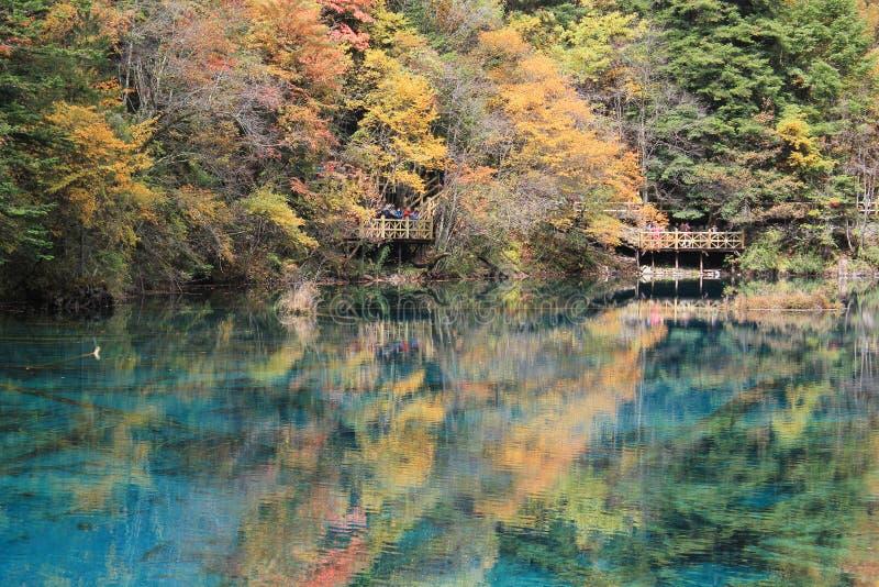 Kolorowy jezioro w Jiuzhaigou obraz royalty free