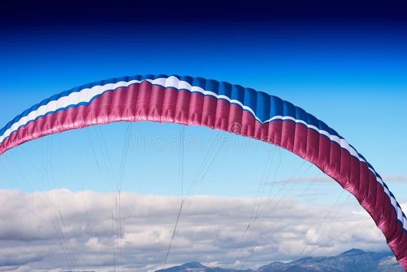 Kolorowy kania szczegół w otwartego nieba tle fotografia royalty free