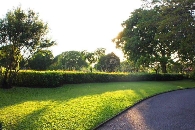 Kolorowy kształtujący teren formalny ogród obrazy stock