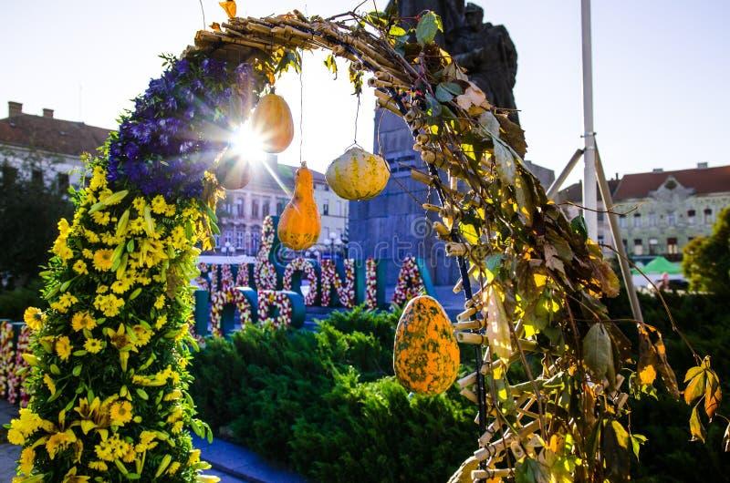 Kolorowy kwiatu przygotowania z zieleni purpurami i menchiami obraz royalty free