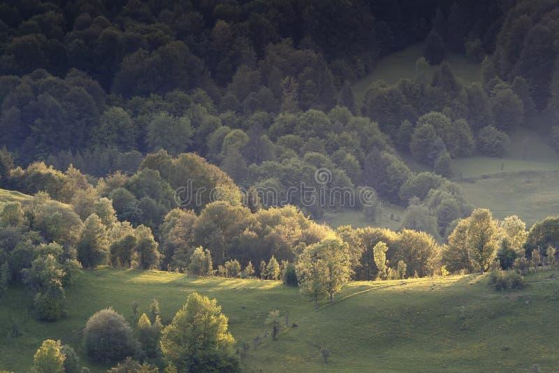 Kolorowy lato krajobraz obrazy royalty free