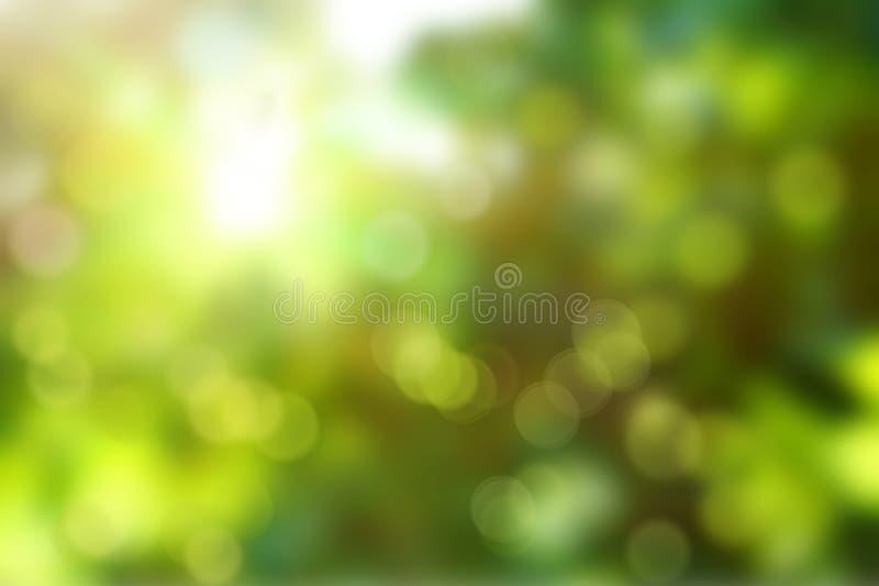 Kolorowy lato lub wiosny backgound plama zdjęcie royalty free