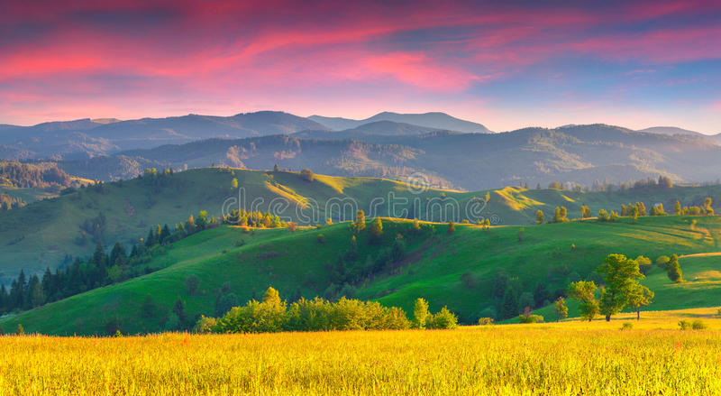 Kolorowy lato wschód słońca w Karpackich górach zdjęcie stock