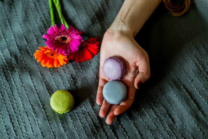 Kolorowy macaron w żeńskiej ręce fotografia royalty free
