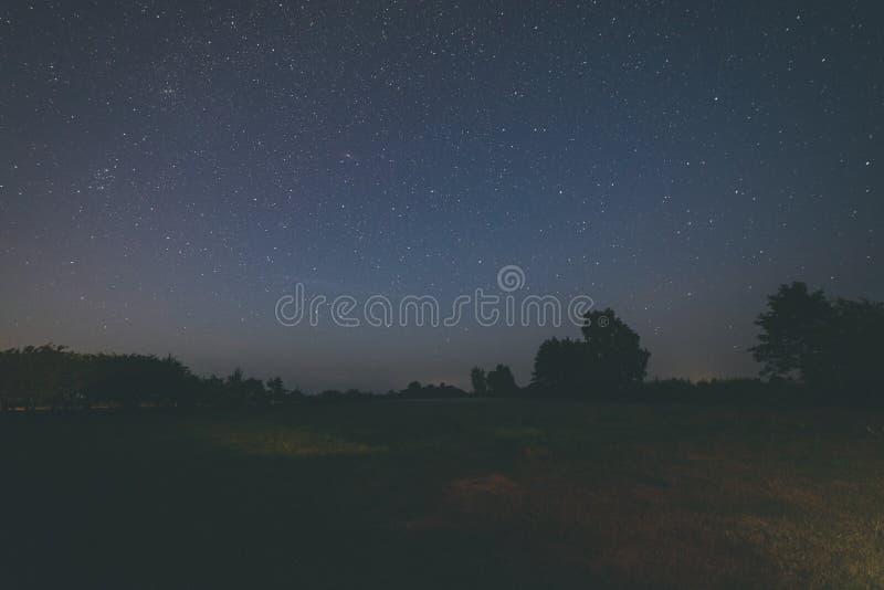 kolorowy milky sposobu galaxy widzieć w nocnym niebie nad drzewami - rocznik obraz stock