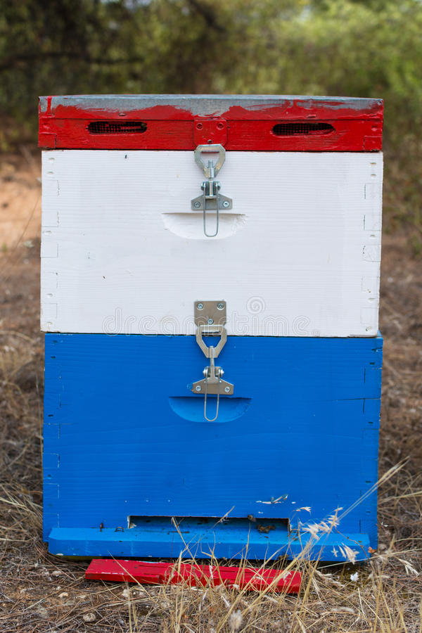 Kolorowy Miodowy ul w Łąkowym zakończeniu Up Błękit, biel i rewolucjonistka Malujący pszczoła rój Obok Sosnowego lasu w lecie, zdjęcie stock