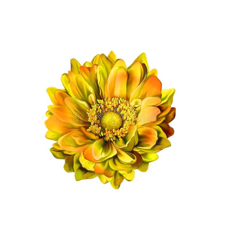 Kolorowy Mona Lisa kwiat, wiosna kwiat ilustracja wektor