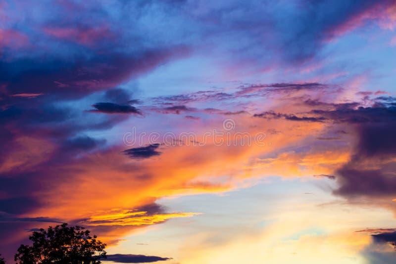 Kolorowy mroczny niebo po deszczu na wieczór czasie podczas zmierzchu za drzewną sylwetką zdjęcie stock