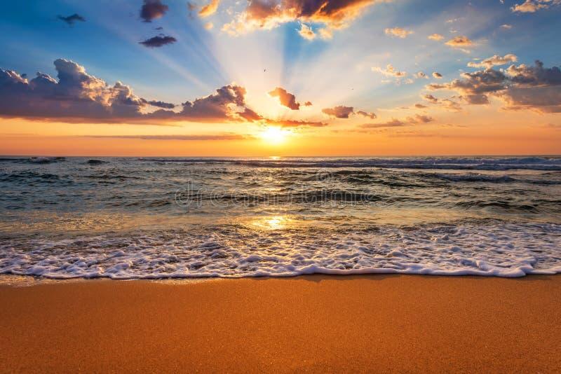 Kolorowy ocean plaży wschód słońca z głębokimi niebieskiego nieba i słońca promieniami fotografia royalty free