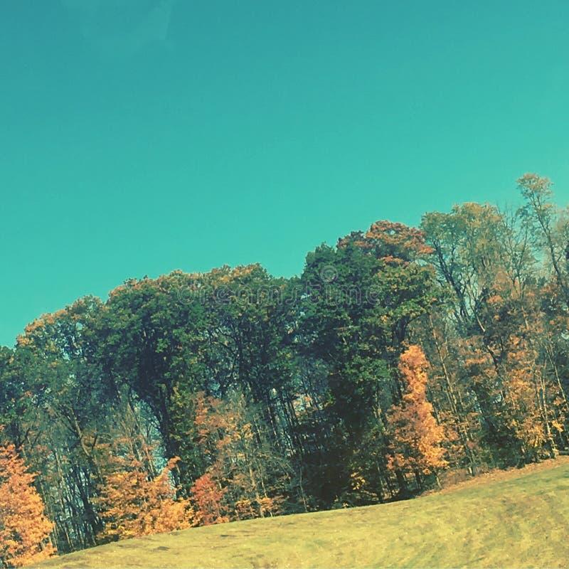 Kolorowy outdoors obrazy royalty free