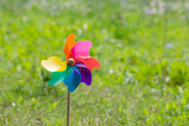Kolorowy pinwheel z lewej strony strzału zdjęcia royalty free