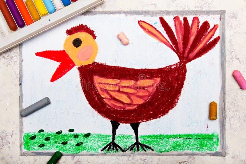 Kolorowy ręka rysunek: piękny brown ptak zdjęcie stock