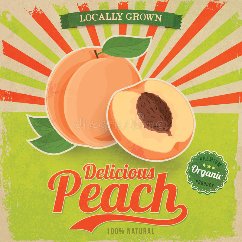Kolorowy rocznik brzoskwini etykietki plakata wektor ilustracji