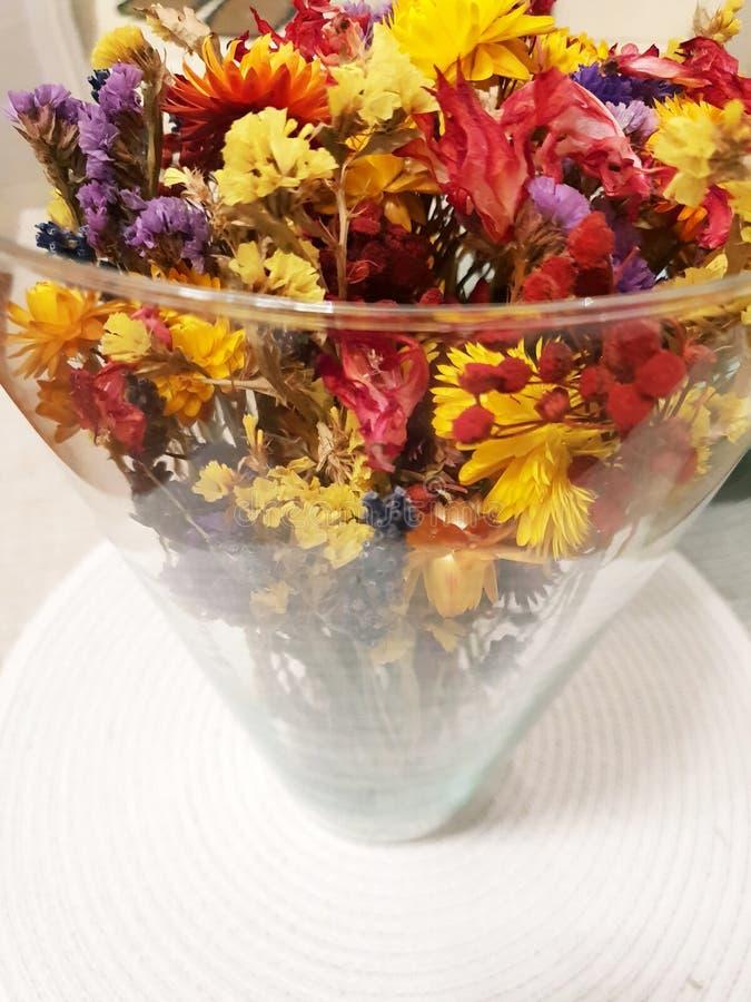 Kolorowy suszy kwiaty obrazy royalty free