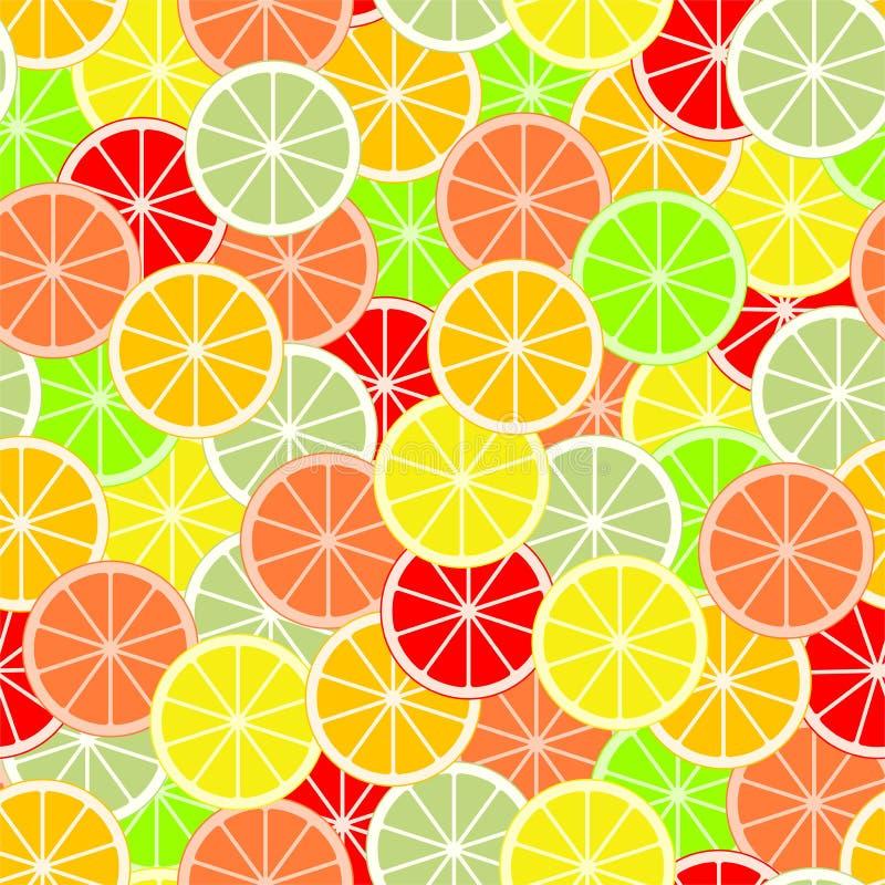 Kolorowy tło plasterki i plasterki cytrus owoc pomarańcze, wapno, grapefruitowy, tangerine, cytryna i pomelo, Tło od royalty ilustracja