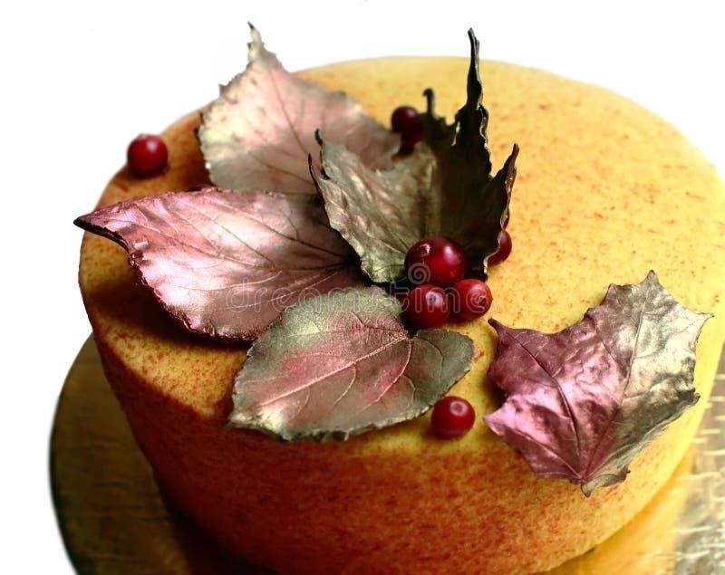 Kolorowy textured pomarańcze tort z czekoladowymi liśćmi klonowymi i cranberries fotografia royalty free