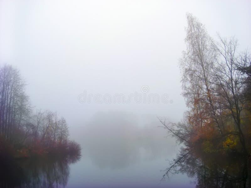 Kolorowy widok z lasem w mistic mgle w ranku, jezioro przy świtem z chmurami odbijał w uspokaja wodę obrazy stock