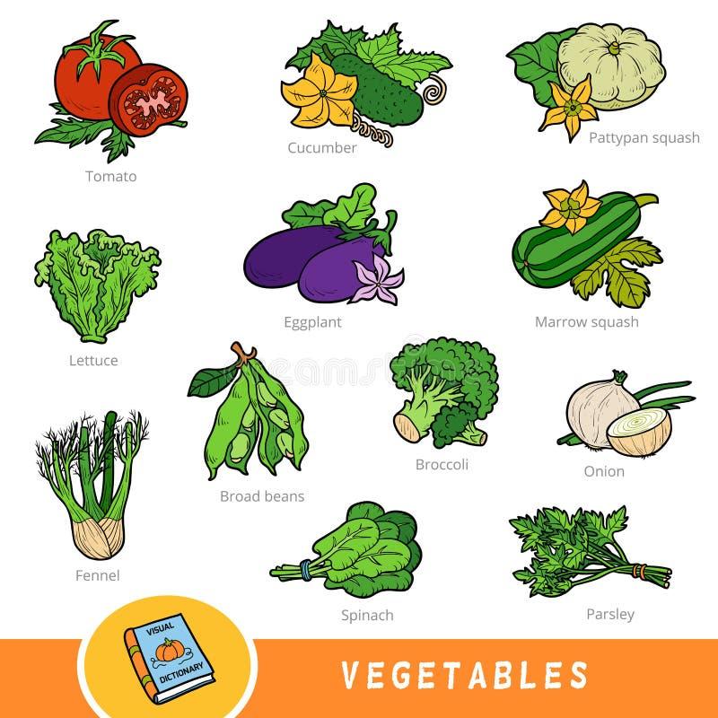 Kolorowy zestaw warzyw, zbiór elementów natury z nazwami w języku angielskim Słownik graficzny dla dzieci o roślinach ilustracja wektor