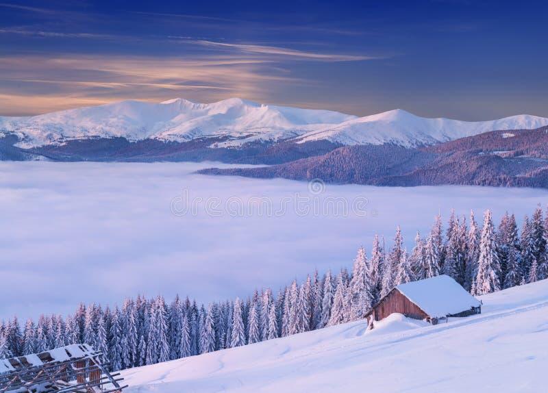 Kolorowy zima ranek w Karpackich górach fotografia stock