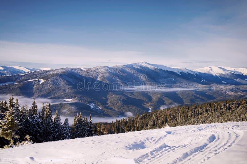 Kolorowy zima ranek w Karpackich górach Karpacki, Ukraina obrazy stock