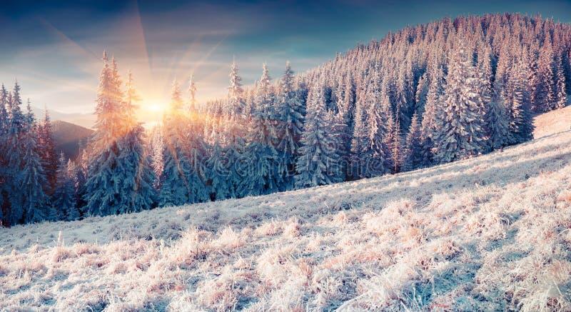 Kolorowy zima wschód słońca w mglistych mountans obraz royalty free
