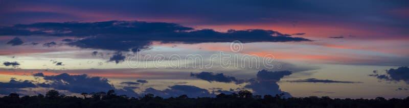 Kolorowy zmierzch na rzecznej amazonce w tropikalnym lesie deszczowym, Brazylia fotografia royalty free