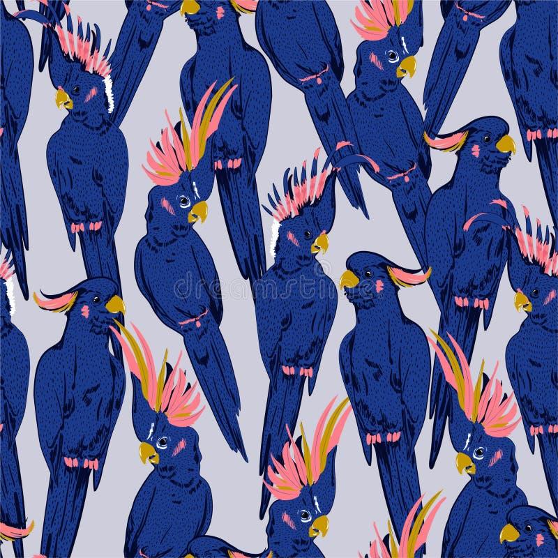 Kolorowych ręki nakreślenia kakadu ptaków lata świeżych błękitnych klimatów bezszwowy wzór w wektorze na tekstura projekcie dla m ilustracja wektor