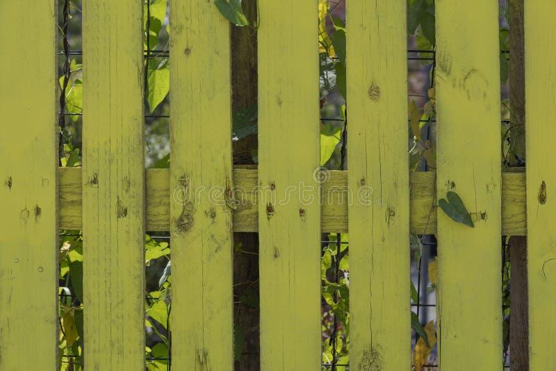 Koloru żółtego ogrodzenie w domu obrazy stock