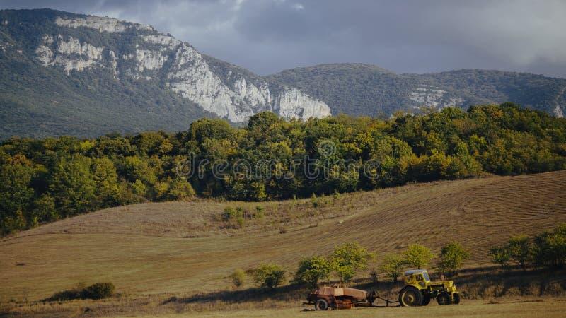 Koloru żółtego pociąg na polach zbliża forrest z górami na tle zdjęcia royalty free