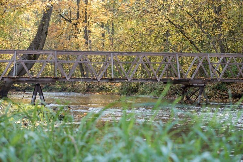 Koloru żółtego, pomarańcze i czerwieni jesieni liście w pięknym spadku parku, Iecava Latvia fotografia royalty free