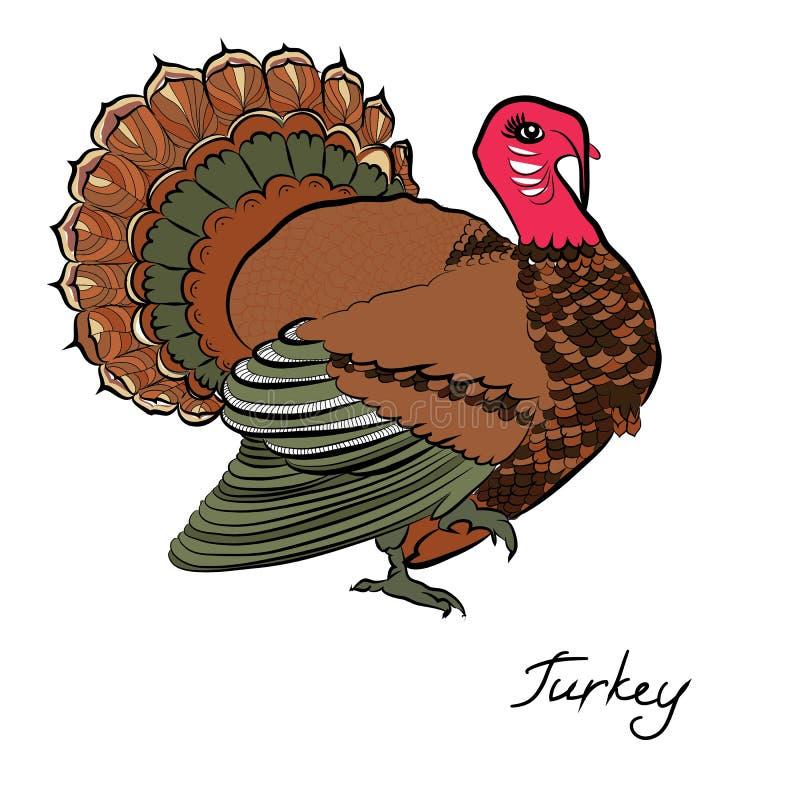 Koloru indyk Dziękczynienie Dzień ilustracja wektor