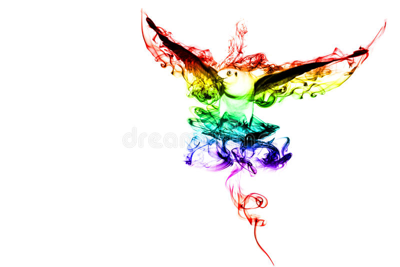 Koloru ptak zdjęcie royalty free