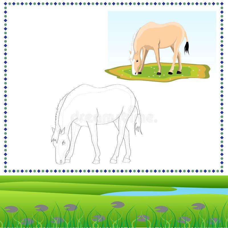 Kolorystyka koń ilustracji