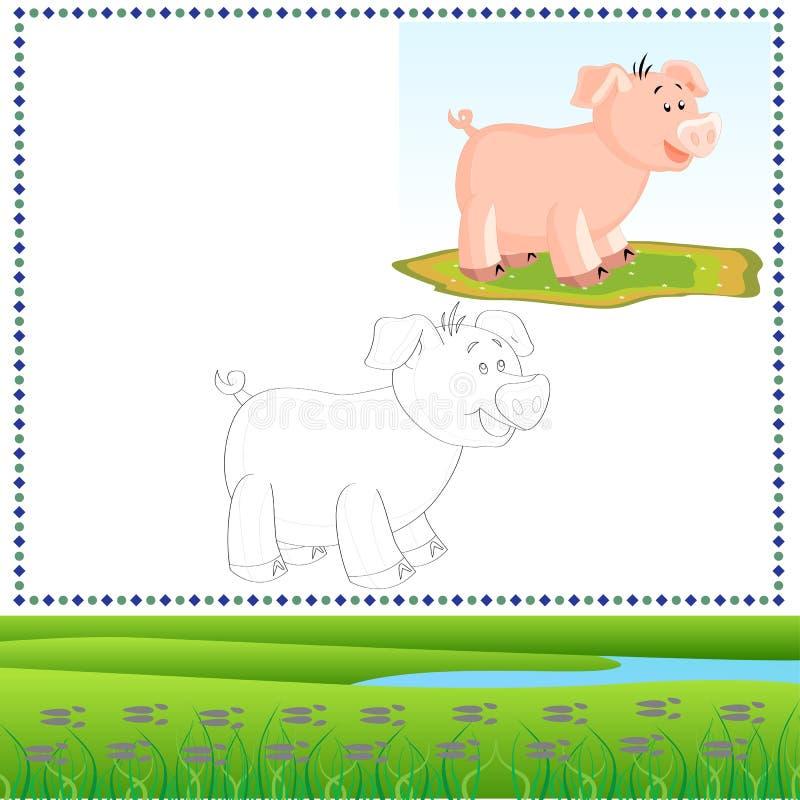 Kolorystyki świnia ilustracji