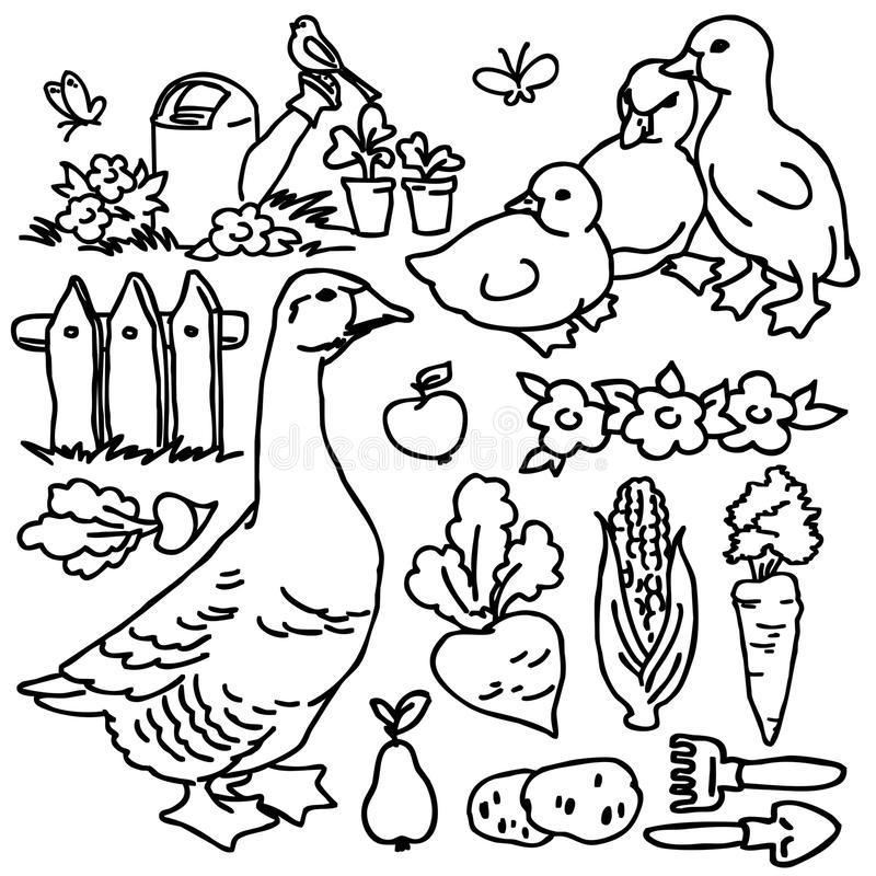 Kolorystyki książka, kreskówki rolna gąska i zwierzęta, ilustracja wektor