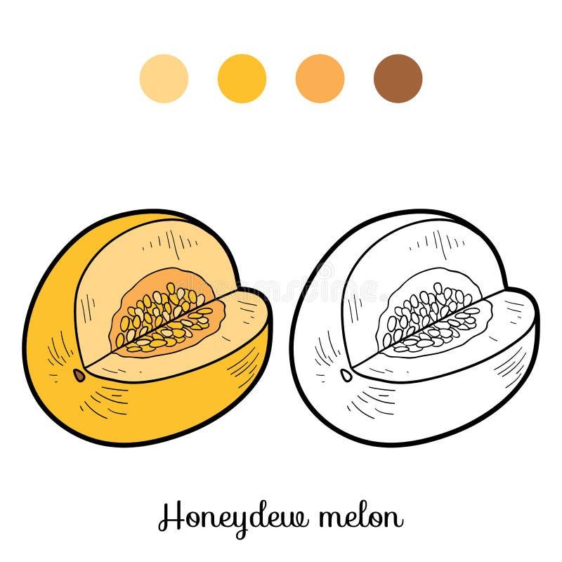Kolorystyki książka: owoc i warzywo (miodunka melon) royalty ilustracja