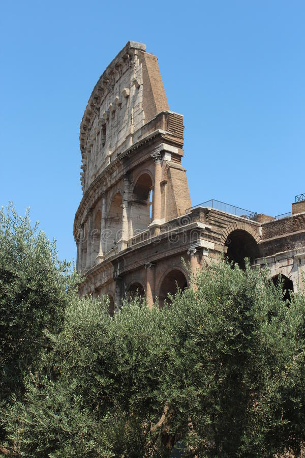 Koloseum royaltyfri bild