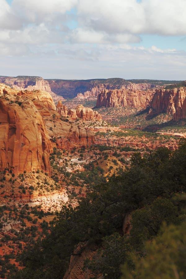 kolossal röd sandsten för kanjon arkivfoto