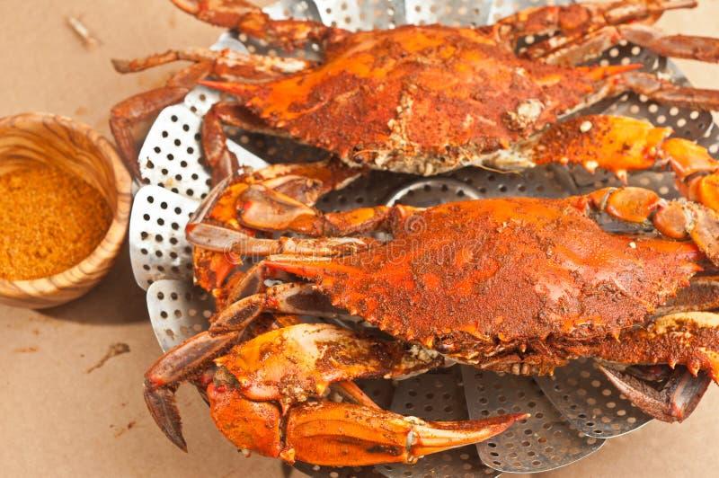 Kolossala, ångade och kryddade chesapeakeblått klöser krabbor på en tabellräkning för brunt papper royaltyfria foton
