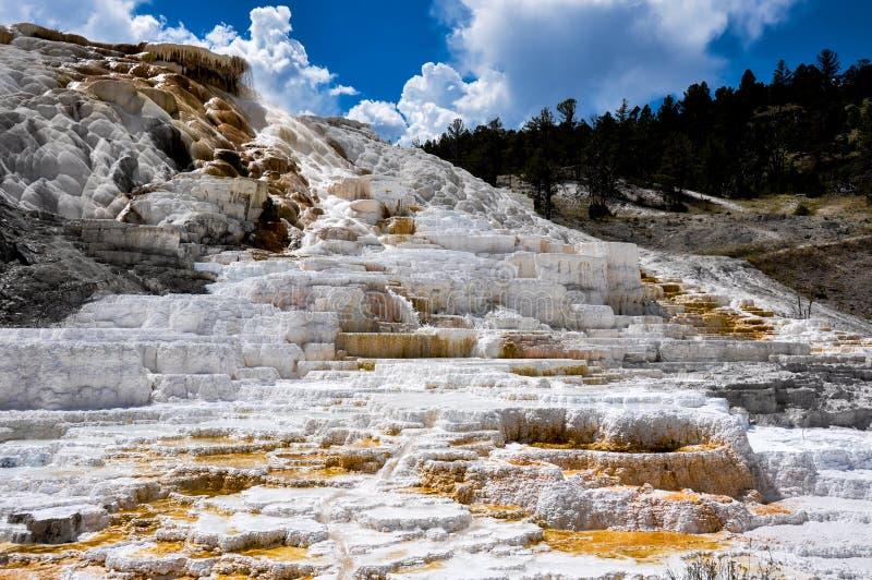 Kolossala terrasser, Yellowstone nationalpark, Wyoming, USA arkivfoto