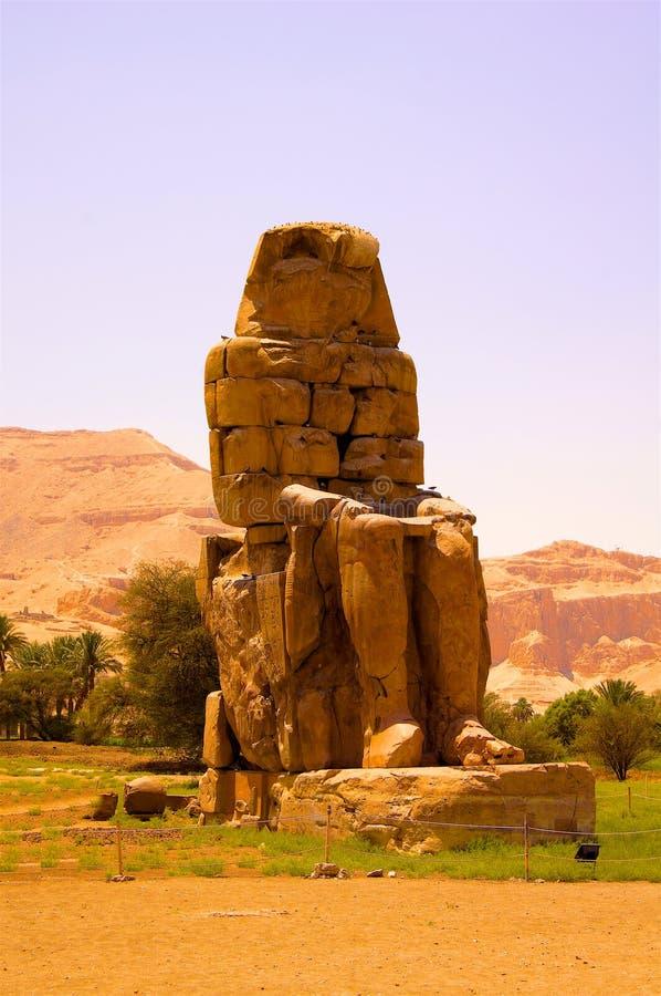 Kolossstatue in Ägypten stockbilder