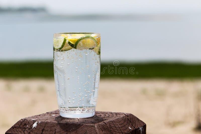 Kolsyrat vatten med citronen och limefrukt arkivfoton