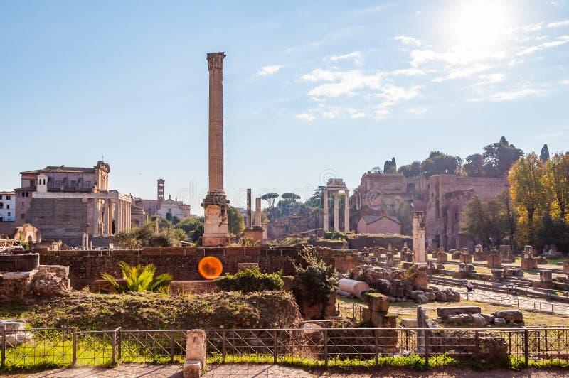 Kolumna Phocas i inni sławni dziejowi przyciągania w Romańskim forum miejscu obraz stock