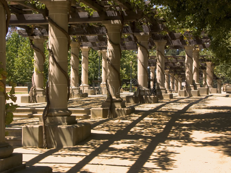 kolumna winnica zdjęcie royalty free