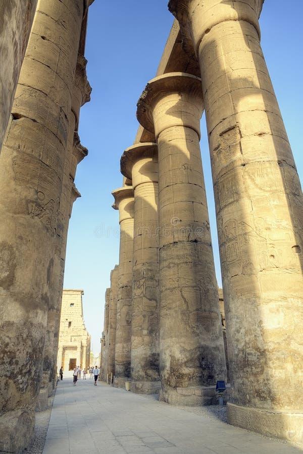 kolumnady Luxor świątynia zdjęcie stock