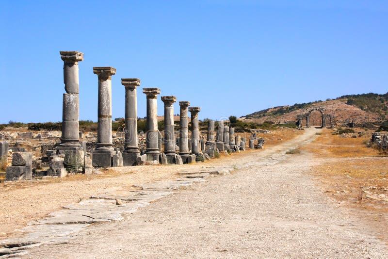 Kolumny na Decumanus Maximus ulicie, Volubilis, Maroko zdjęcia royalty free